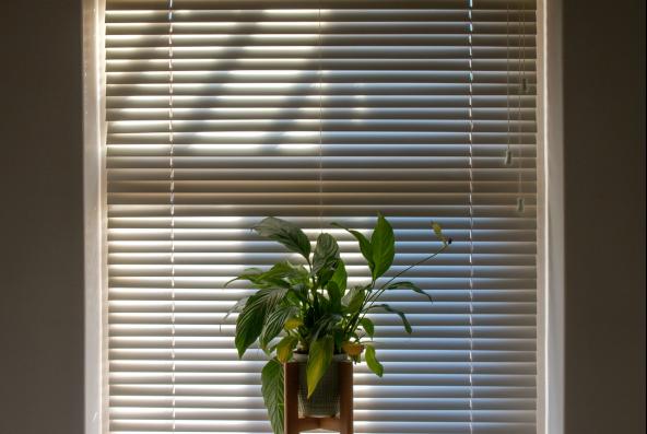 Ako mať čisté ovzdušie v domácnosti